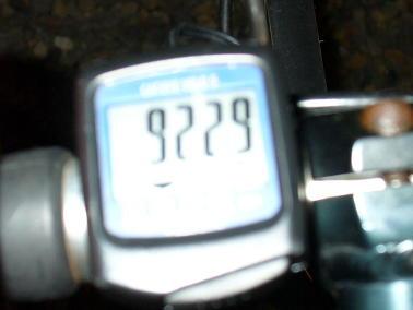 P1020373(1)(1).JPG