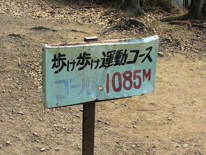 P1030553(1)(1).JPG